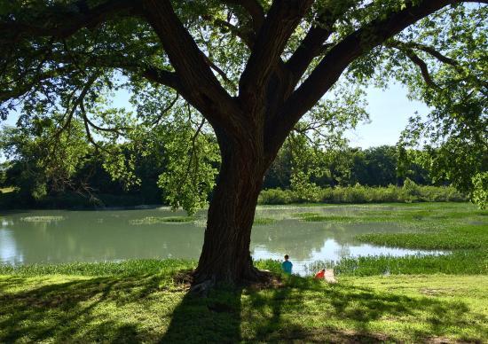 South Llano River RV Park & Resort