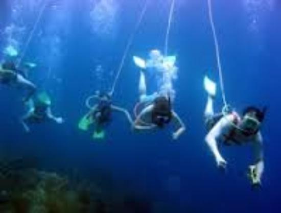 Orlando Dive Adventure