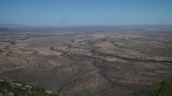 Nieuwoudtville, South Africa: View from the pass