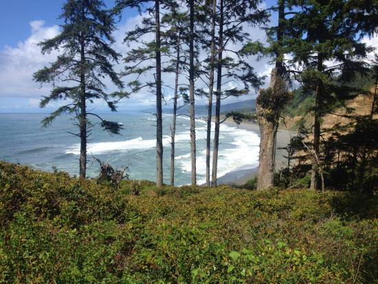 Agate Beach: View at the top before you start down the path and stairs.