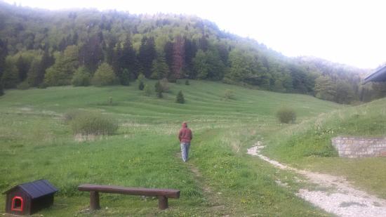 Dedinky, Slovakia: Okolie