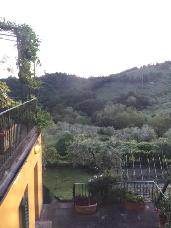 Villa Di Campolungo Agriturismo : photo2.jpg