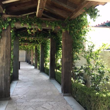 Clearlake Oaks, Kalifornien: Outdoor gardens