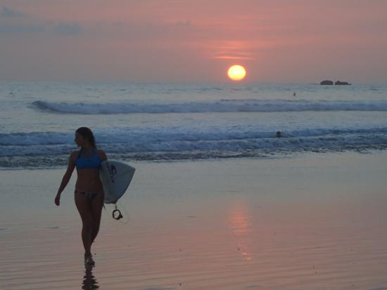 Harbor Reef Surf Resort: Nosara beach, surfing at sunset