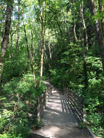 Tryon Creek State Natural Area: photo7.jpg