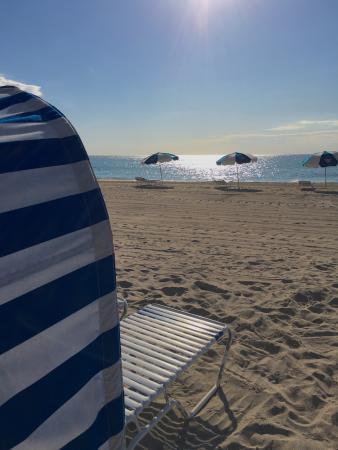 Hollywood Beach Marriott: Our day, everyday.