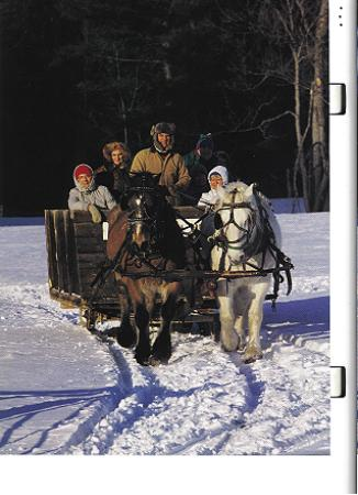 Chestertown, Нью-Йорк: Horse drawn sleigh rides at nearby Circle B Ranch