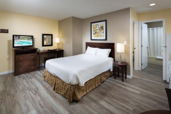 Siesta Suites: Large 1 Bedroom Suite - 1 Queen + 1 Sofa Bed. Downstairs.
