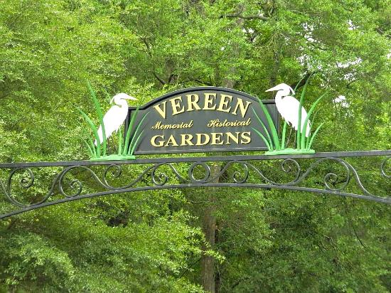 cool trees and nature picture of vereen memorial historical gardens little river tripadvisor