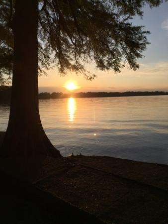 Tiptonville, เทนเนสซี: May 2016 beautiful sunset and calm waters. Reelfoot Lake State Pasrk