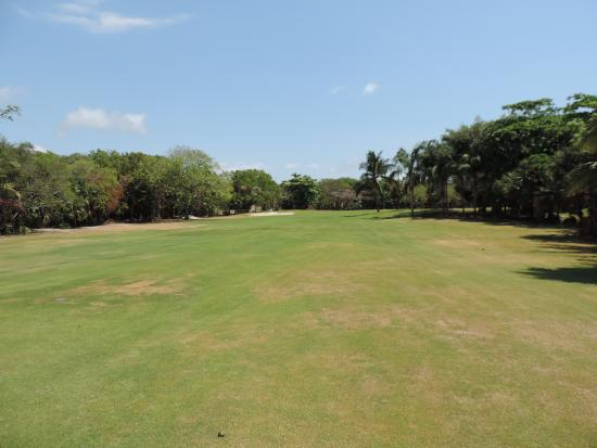 Puerto Aventuras Golf & Racquet Club: Puerto Aventuras, México, Club de Golf y Racquet. Entorno de árboles.