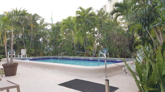 Grand Palm Plaza Photo