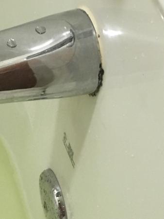 Holiday Inn Express Pembroke Pines-Sheridan St : Moldy bathrooms