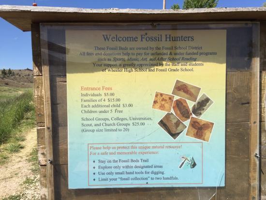 Fossils at Wheeler High School : Entrance fee information