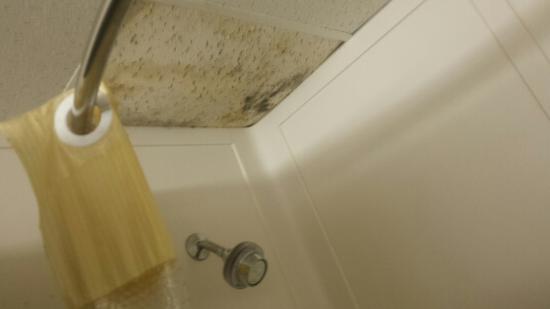 Foto de Motel 6 Springfield