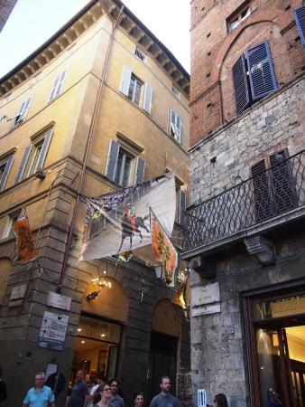 Siena Town