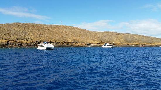 Lahaina Cruise Company: 20160531_085628_large.jpg