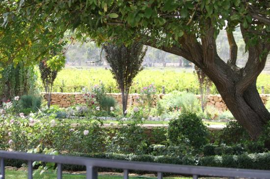 Penola, Australia: Garden at St Marys WInes