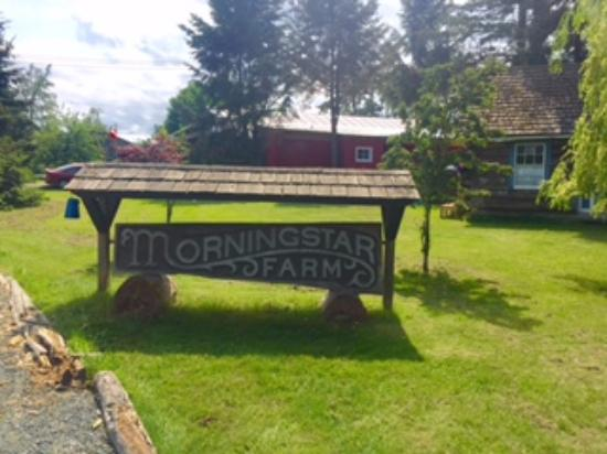 Morningstar Farms, the Little Qualicum Cheeseworks and
