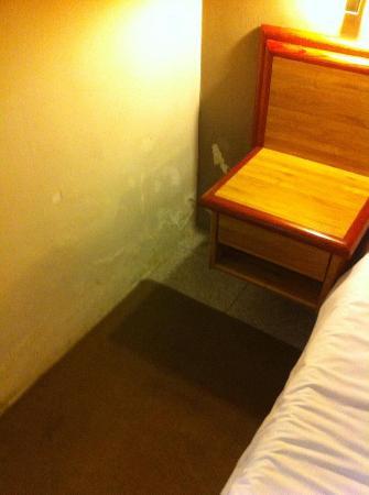 Park Hotel: La muffa a 50 cm dal letto.