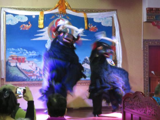 KuangNiu Restaurant: Yaks!
