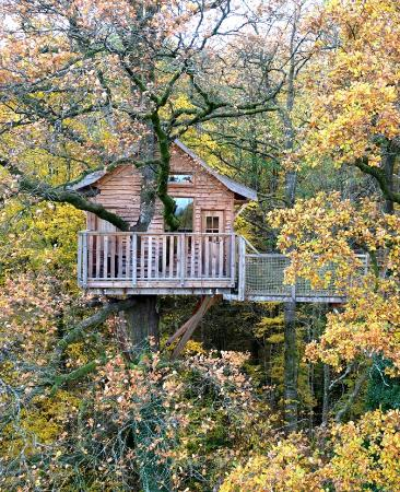 Le Chene Perche - Tree Houses
