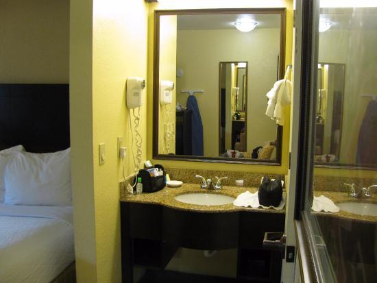 BEST WESTERN PLUS Orlando Convention Center Hotel: Pia fora no quarto