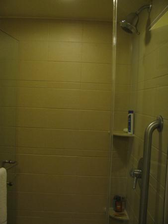 BEST WESTERN PLUS Orlando Convention Center Hotel: Banheiro