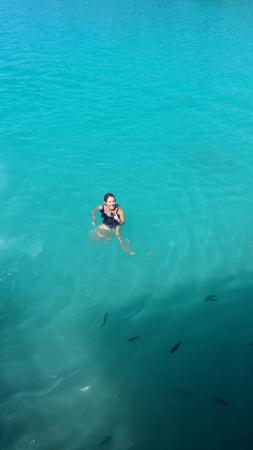 Lusia's Lagoon Chalets: 20160525_104220_large.jpg