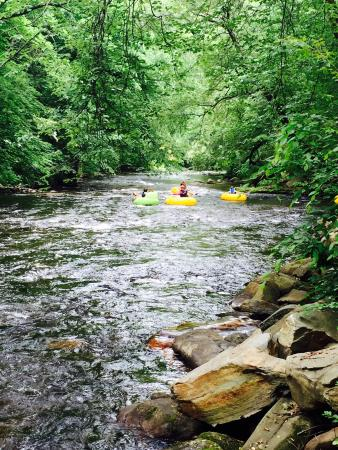 Deep Creek Tube Center & Campground: Beautiful landscapes! We had the most adventurous yet relaxing vacation. We can't wait to come b