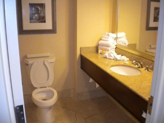 Hollywood Casino Tunica Hotel-billede