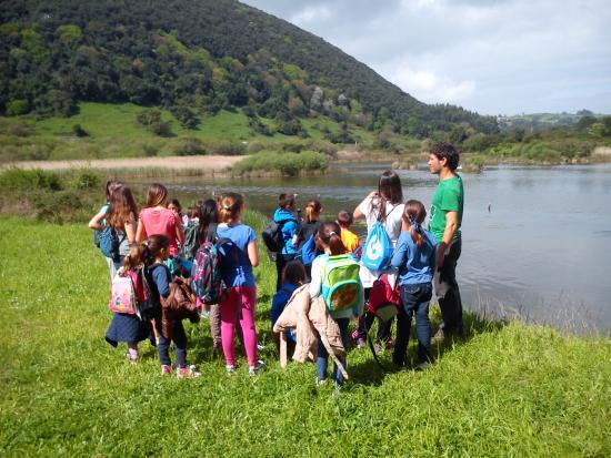 NojActiva: Conociendo la flora, fauna y ecosistemas de Noja.