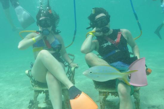 Ocean Adventures Bavaro Splash : Snuba Diving!