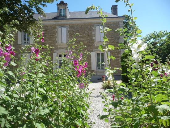 Chaille-les-Marais, France: Roses trémières chez Côté-Marais