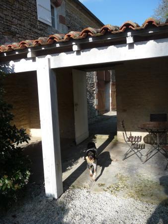 Chaille-les-Marais, France: Le patio des hôtes chez Côté-Marais