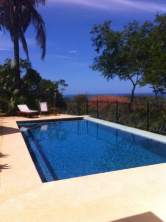 Ostional, Costa Rica: The pool and oceanviews