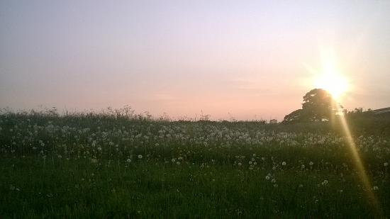 Windy Arbour Farm Photo