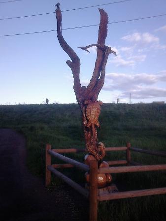 Lafayette, Kolorado: Waneka Lake tree sculpture