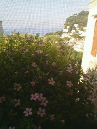 Villa Helios: FB_IMG_1464801307412_large.jpg