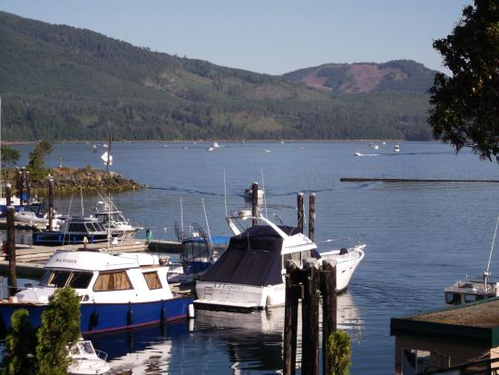 Port Alberni, Canada: Overlooking China Creek Marina