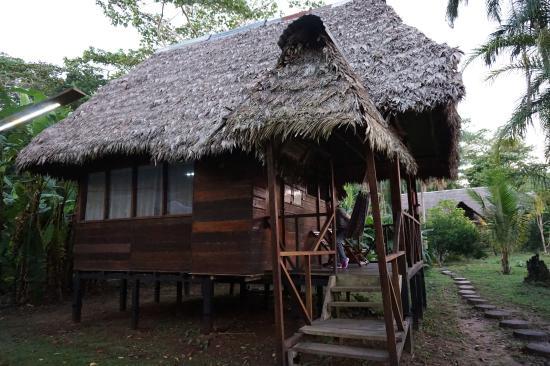 Wasai Tambopata Lodge : Our lodge