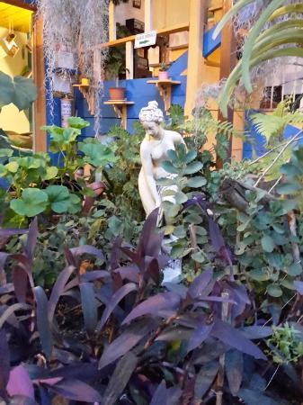 Ciudad de Segorbe Hostel Salento : Jardín Central del Hostal