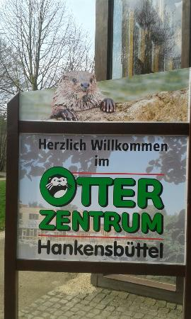 Hankensbuettel, Alemania: 20160410_101407_large.jpg