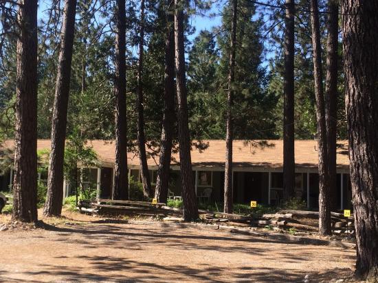 Ranchito Motel: photo2.jpg