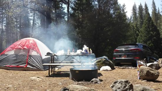 Wawona Campground 사진