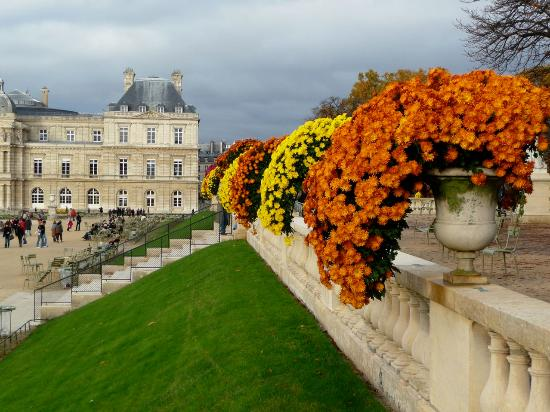 bosquet de fleurs bordant les balustrades du jardin picture of luxembourg gardens paris. Black Bedroom Furniture Sets. Home Design Ideas