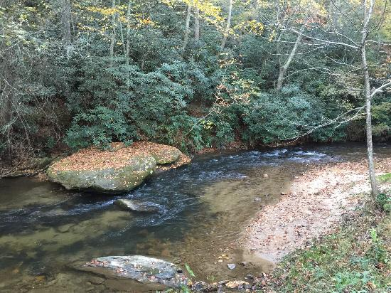 Ferguson, NC: The stream on the property.