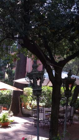 Hotel Villa Linneo: Jardin