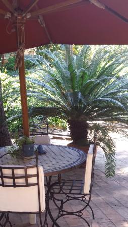 Hotel Villa Linneo: Super terrasse