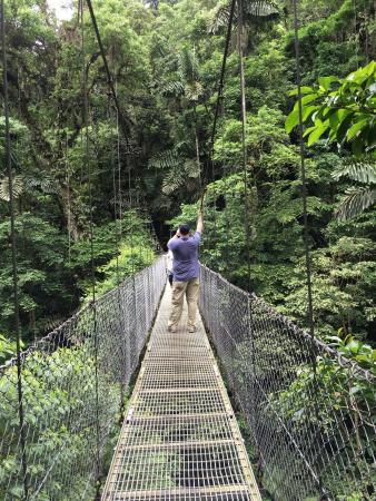 Нуэво-Ареналь, Коста-Рика: Arenal hanging bridges and Rio Celeste hike. Two amazing experiences booked through PTW